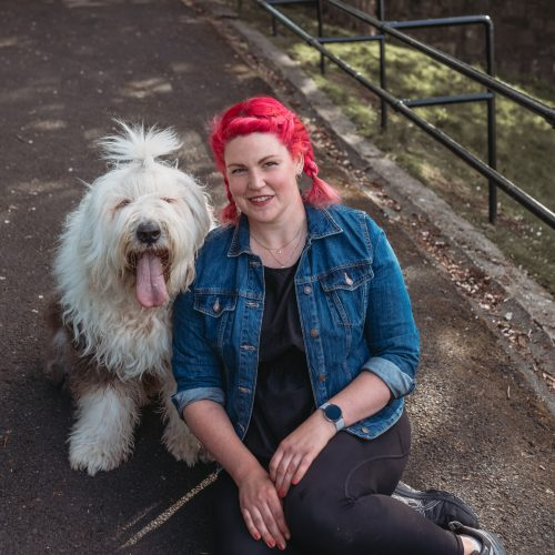 Romanian Rescue Adopt Dog Training Edinburgh Adopting Pulling Lead Collar Puppy Harness Professional Lessons Tips Train Dogs Reactive Scared Anxious Barking Nervous